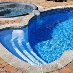 Types-of-Algae-in-Your-Pool